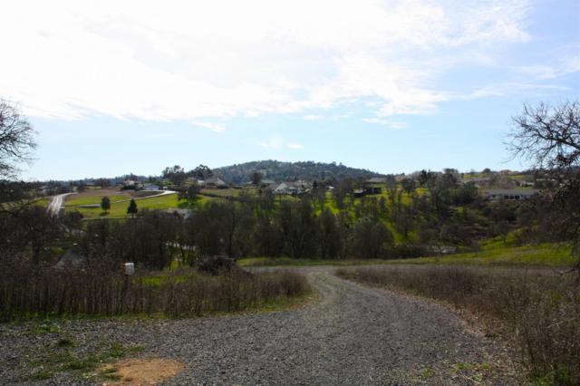 1833 Choctaw Road, Copperopolis, CA 95228 (MLS #18007238) :: Heidi Phong Real Estate Team