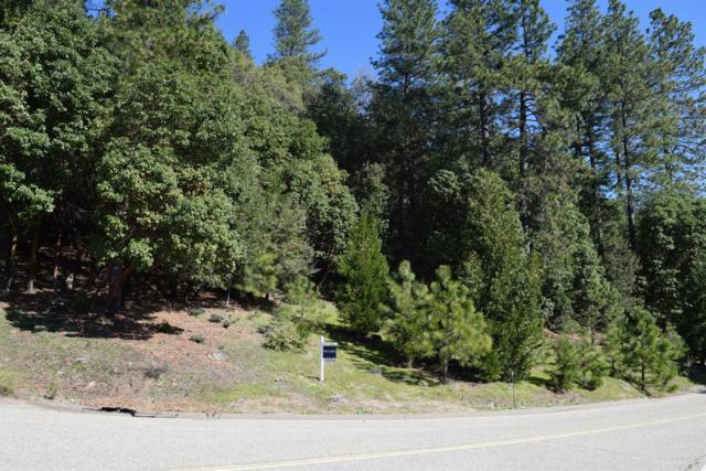 16350 Stephanie Way, Pioneer, CA 95666 (MLS #18010827) :: Keller Williams - Rachel Adams Group