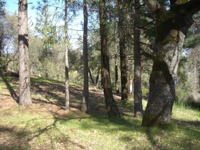 2335 Deer Ravine Trail, Cool, CA 95614 (MLS #18012795) :: Dominic Brandon and Team