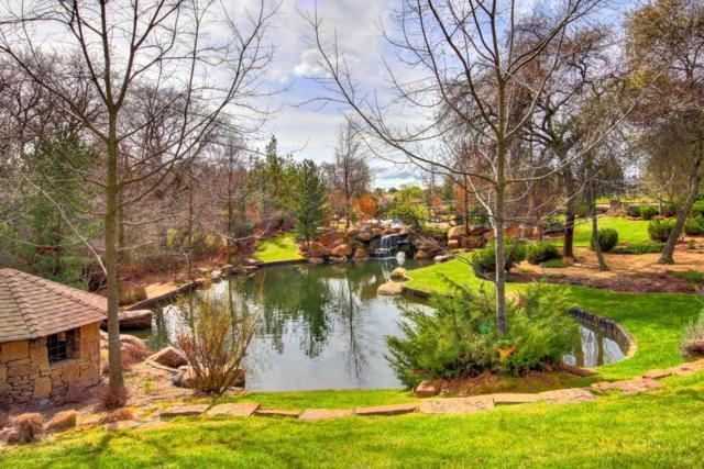 6200 Ruscada Court, Loomis, CA 95650 (MLS #18013804) :: Team Ostrode Properties