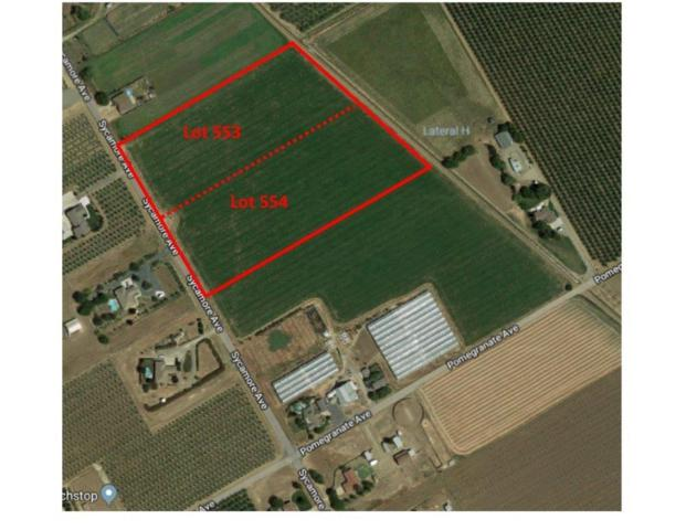 0 Lot 553 & 554 Sycamore Avenue, Patterson, CA 95363 (MLS #18015291) :: Dominic Brandon and Team