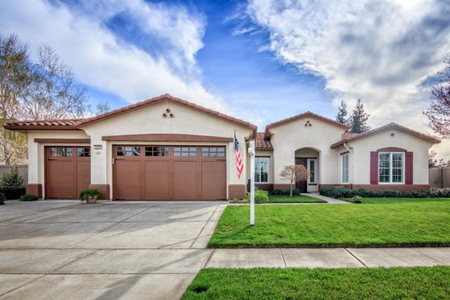 2329 River Berry Drive, Manteca, CA 95336 (MLS #18015450) :: REMAX Executive