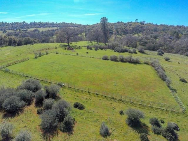 4701 Ridge Drive, Shingle Springs, CA 95682 (MLS #18018094) :: Keller Williams - Rachel Adams Group