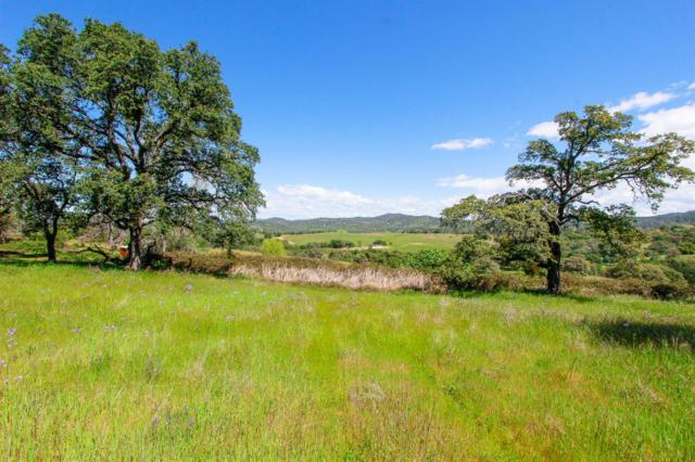 20760 White Oak Dr, Grass Valley, CA 95949 (MLS #18020956) :: Heidi Phong Real Estate Team