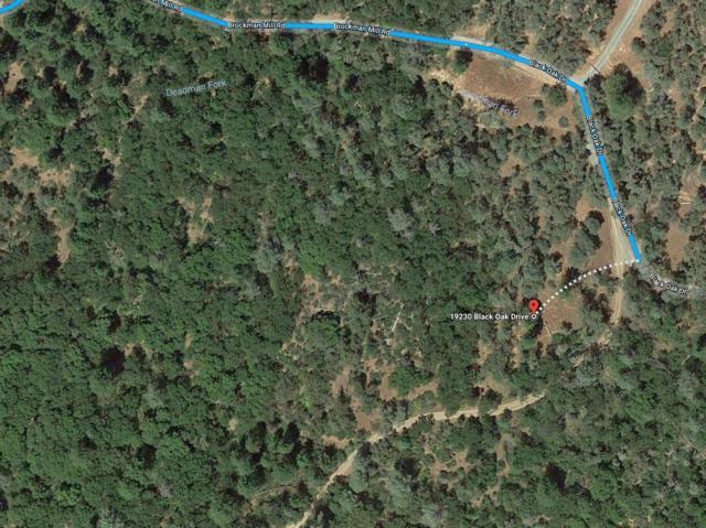 19230 Black Oak Drive, Fiddletown, CA 95629 (MLS #18022392) :: Team Ostrode Properties