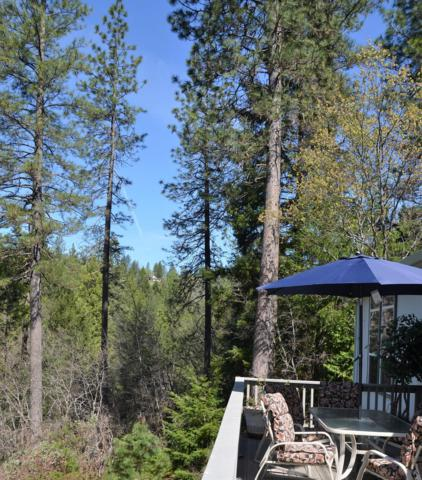 4032 Sierra Springs Drive, Pollock Pines, CA 95726 (MLS #18023009) :: Dominic Brandon and Team