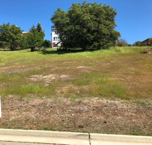 10214 Sunrise Vista, Auburn, CA 95603 (MLS #18023187) :: Dominic Brandon and Team