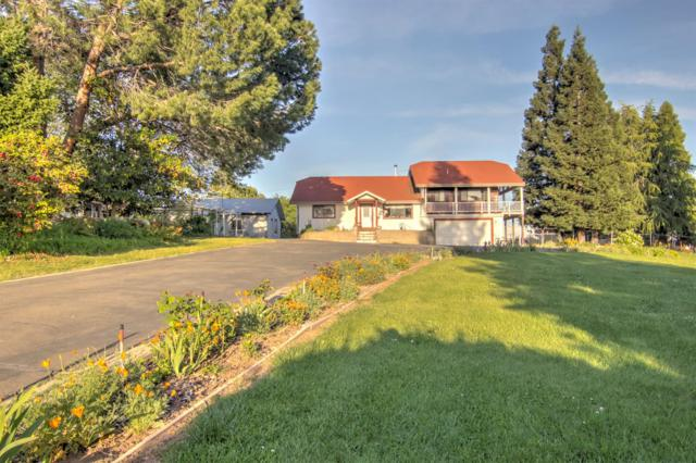 3555 Holly Hill Lane, Loomis, CA 95650 (MLS #18025169) :: Dominic Brandon and Team