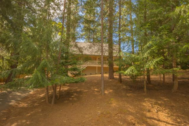 5637 Daisy Circle, Pollock Pines, CA 95726 (MLS #18027054) :: Dominic Brandon and Team
