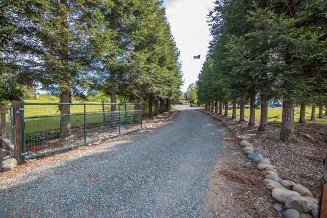 12182 Clay Station Road, Herald, CA 95638 (MLS #18027499) :: Heidi Phong Real Estate Team