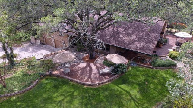 3251 Longhorn Ridge Road, Cameron Park, CA 95682 (MLS #18028838) :: Heidi Phong Real Estate Team