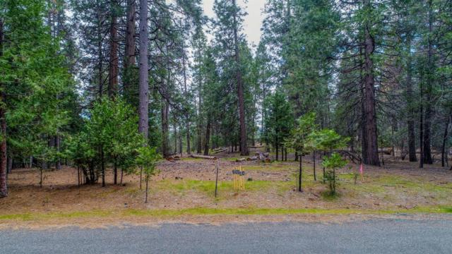 0-25594 Overland, Volcano, CA 95669 (MLS #18029053) :: Heidi Phong Real Estate Team