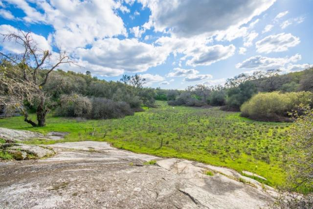 0 Caperton Court, Penryn, CA 95663 (MLS #18029746) :: NewVision Realty Group