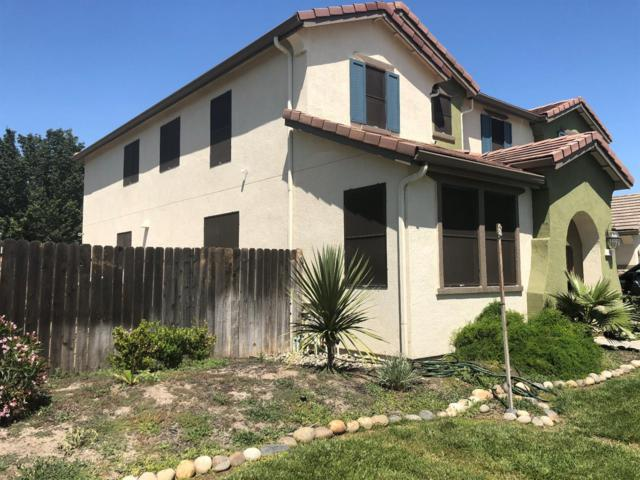 101 Shorthorn Street, Patterson, CA 95363 (MLS #18030148) :: The Merlino Home Team