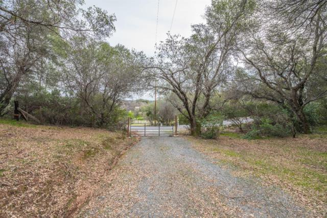 13532 N North Star Court, Sutter Creek, CA 95685 (MLS #18031616) :: The Del Real Group