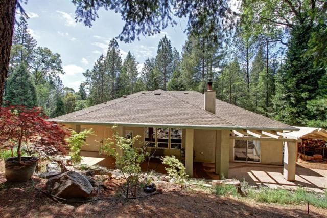 6255 Baywood Court, Foresthill, CA 95631 (MLS #18031938) :: The Merlino Home Team