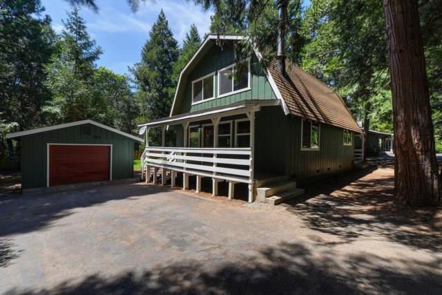16626 Meadow Vista Drive, Pioneer, CA 95666 (MLS #18033555) :: Heidi Phong Real Estate Team