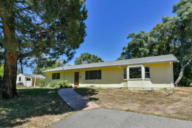 3940 Freedom Rd, Placerville, CA 95667 (MLS #18035401) :: Heidi Phong Real Estate Team