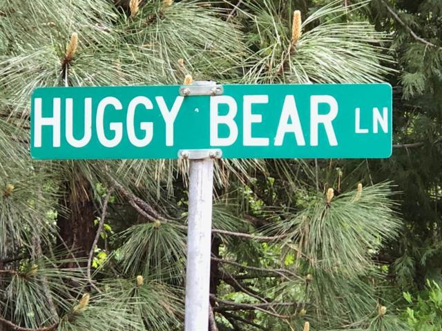 0 Huggy Bear Lane, Grizzly Flats, CA 95636 (MLS #18036883) :: The Del Real Group
