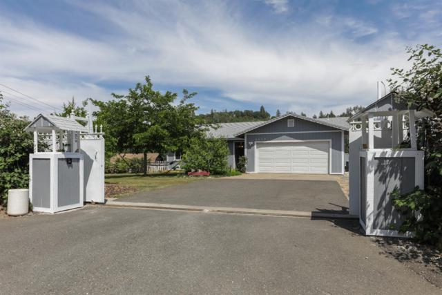 4649 Holly Drive, Shingle Springs, CA 95682 (MLS #18037149) :: NewVision Realty Group
