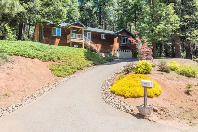 3175 Gold Ridge, Pollock Pines, CA 95726 (MLS #18037381) :: NewVision Realty Group