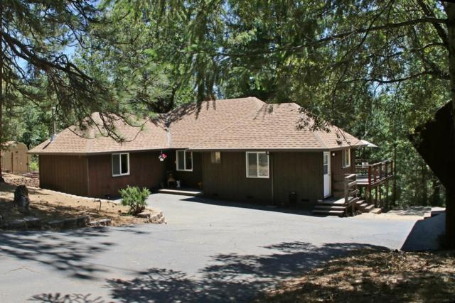 5961 Pennyroyal Drive, Pollock Pines, CA 95726 (MLS #18037636) :: NewVision Realty Group