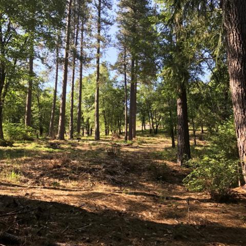 0 Ridgeway, Pollock Pines, CA 95726 (MLS #18038254) :: NewVision Realty Group