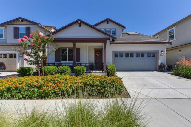 305 Bougainvilla Drive, Brentwood, CA 94513 (MLS #18038785) :: Dominic Brandon and Team