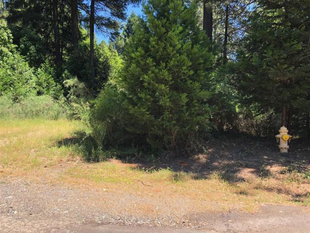 15 Timberland, Foresthill, CA 95631 (MLS #18039546) :: Team Ostrode Properties