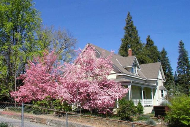 432 Neal Street, Grass Valley, CA 95945 (MLS #18039867) :: Heidi Phong Real Estate Team