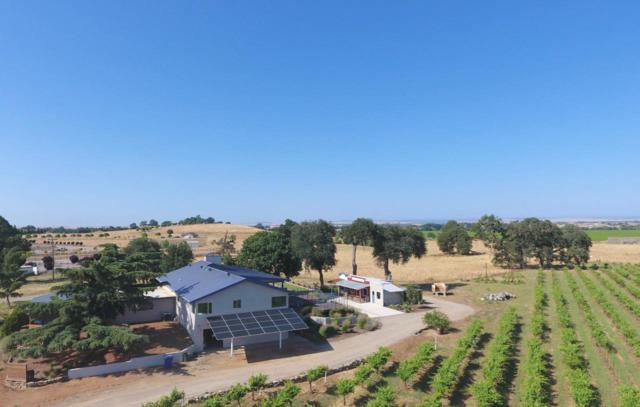 13403 Silva Ranch Road, Sloughhouse, CA 95683 (MLS #18039946) :: Team Ostrode Properties