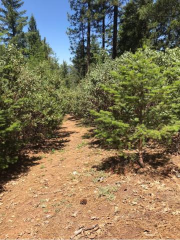 0 Parcel, Pollock Pines, CA 95726 (MLS #18040475) :: Keller Williams - Rachel Adams Group