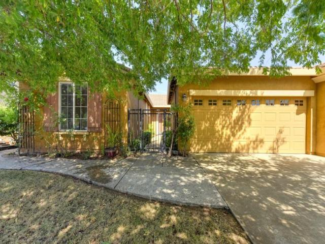 688 Linley Lane, Lincoln, CA 95648 (MLS #18046219) :: NewVision Realty Group