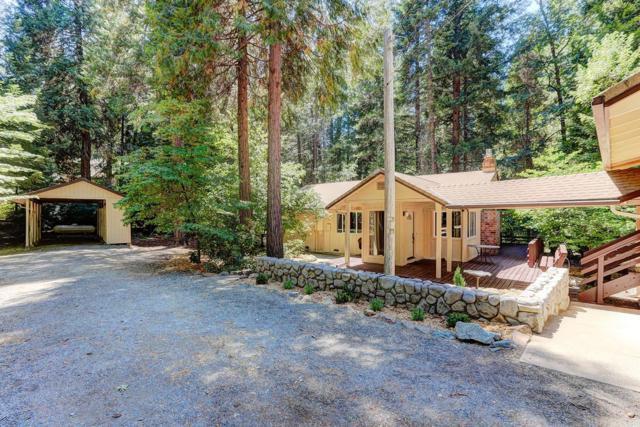 15561 Cascade Loop, Nevada City, CA 95959 (MLS #18046420) :: Heidi Phong Real Estate Team