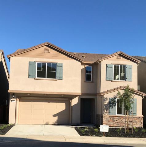 676 Jade Way, Fairfield, CA 94534 (MLS #18048589) :: REMAX Executive
