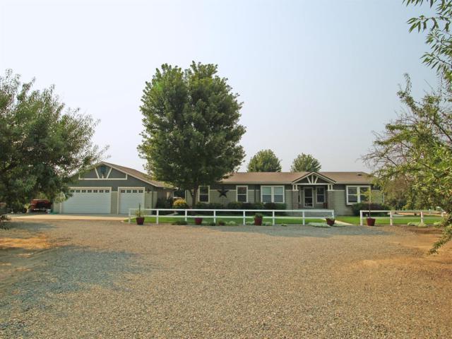17777 Williams Avenue, Hilmar, CA 95324 (MLS #18052274) :: The Del Real Group
