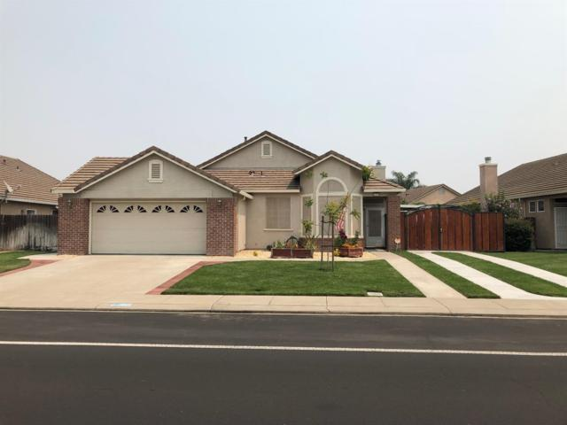 1390 Primavera Avenue, Manteca, CA 95336 (MLS #18054385) :: Dominic Brandon and Team