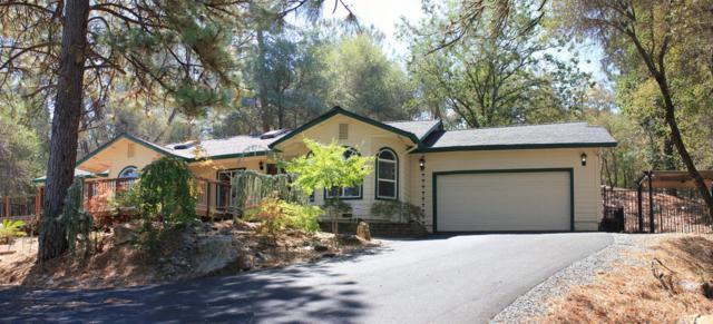 2950 Sweetwater Trail, Cool, CA 95614 (MLS #18055497) :: Dominic Brandon and Team