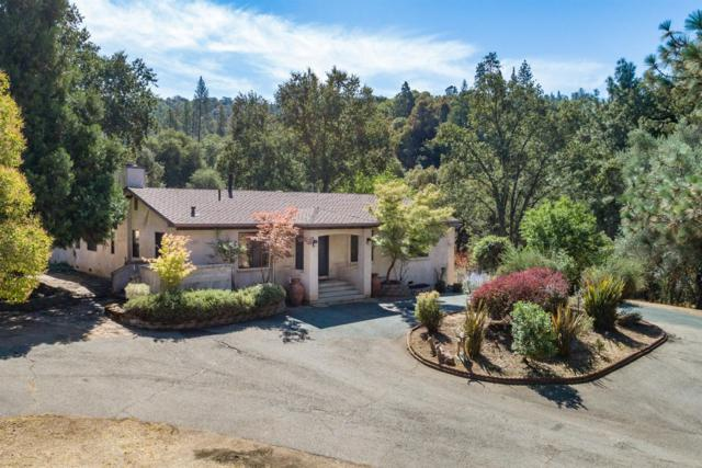 14135 Sutter Creek Road, Sutter Creek, CA 95685 (MLS #18056166) :: NewVision Realty Group
