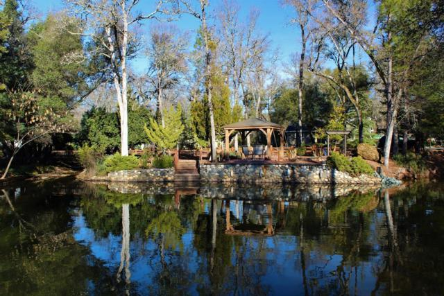 12217 Lakeshore North Drive, Auburn, CA 95602 (MLS #18056364) :: The Del Real Group