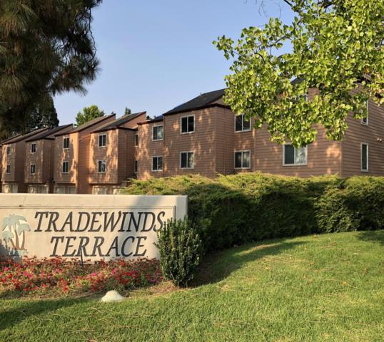 253 Sumba Court, San Jose, CA 95123 (MLS #18058064) :: REMAX Executive