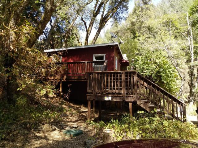 17450 Sutter Creek Volcano Road, Sutter Creek, CA 95685 (MLS #18062374) :: The MacDonald Group at PMZ Real Estate
