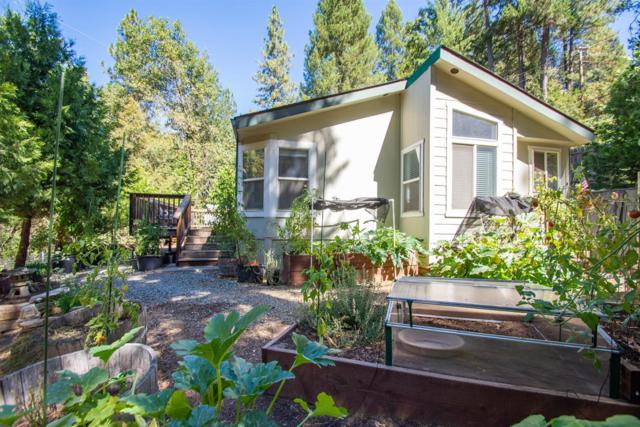4520 Fairglade, Placerville, CA 95667 (MLS #18062868) :: REMAX Executive