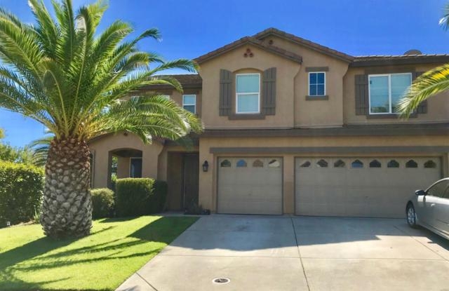 4420 Marvel Court, Sacramento, CA 95843 (MLS #18065520) :: The Del Real Group