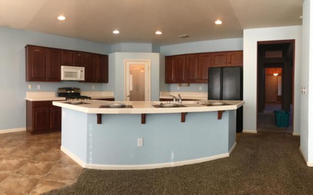 205 Coastal Lane, Waterford, CA 95386 (MLS #18065912) :: Heidi Phong Real Estate Team