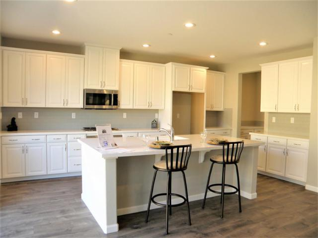 5709 Desert Mallow Street, Rocklin, CA 95677 (MLS #18065922) :: REMAX Executive