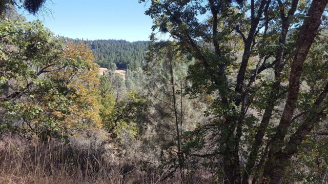 5371 Five Spot Road, Pollock Pines, CA 95726 (MLS #18066459) :: Heidi Phong Real Estate Team