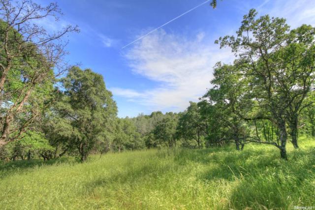 5050 Garden Bar Road, Lincoln, CA 95648 (MLS #18069187) :: The MacDonald Group at PMZ Real Estate