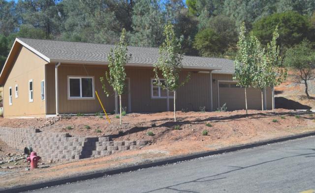 1463 American River Trail, Cool, CA 95614 (MLS #18070318) :: The Merlino Home Team