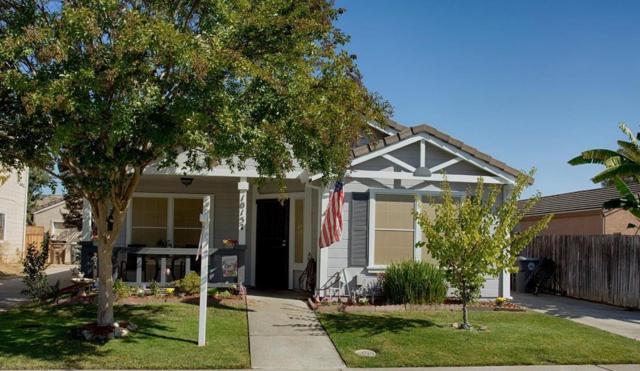 10157 Sheffield Oak Way, Elk Grove, CA 95624 (MLS #18071970) :: The Merlino Home Team